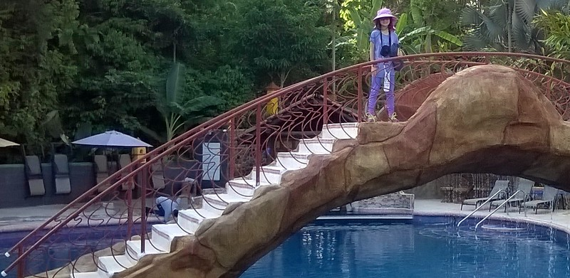 Our hotel at the entrance to Manuel Antonio National Park has a bridge over the swimming pool and a cutie on the bridge.