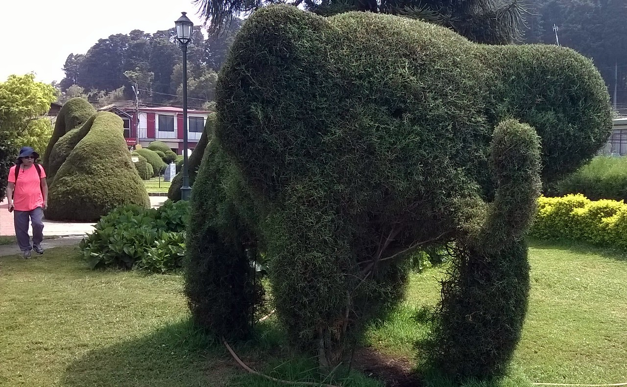 Who would have thought...elephants in Costa Rica!
