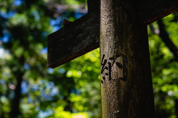 old Torii Gate | Takeyama-Benzaiten Shrine