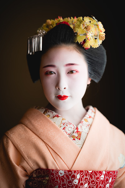 🇯🇵 Portrait of a Maiko