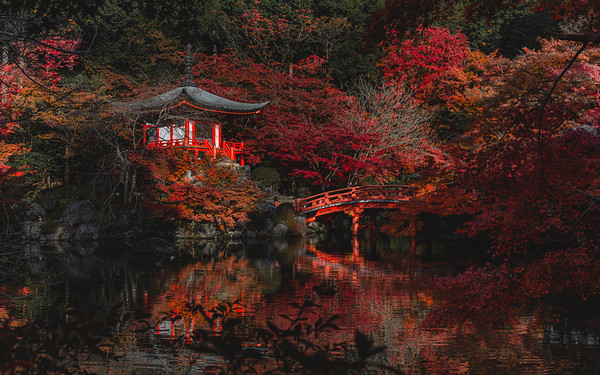 🇯🇵🍂  Bentendo Hall | Daigo-ji