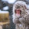 feeling cold...