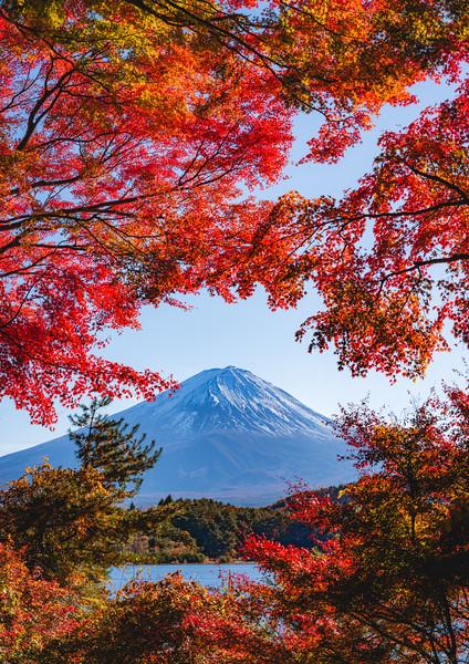 🇯🇵🗻�� Mount Fuji