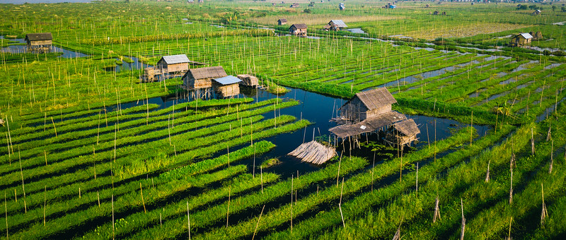 Floating Gardens | Inle Lake