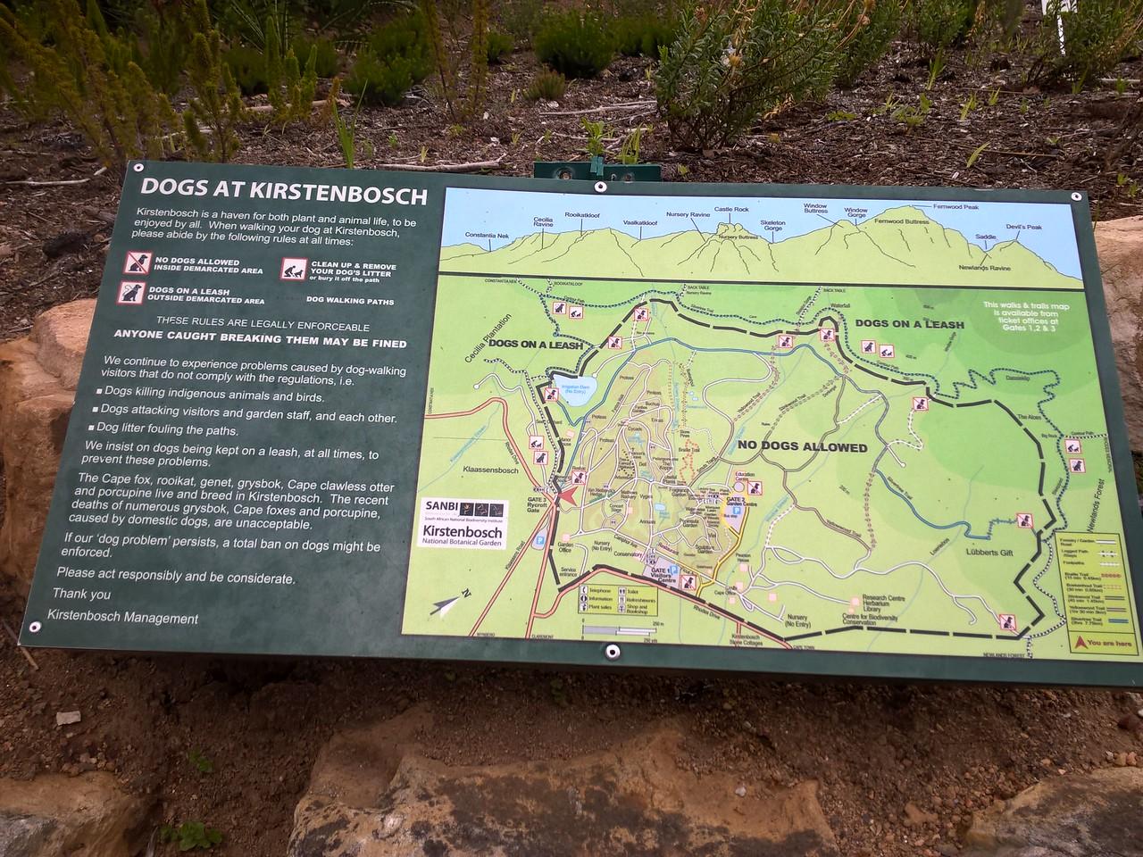 Kirstenbosch is a beautiful garden.