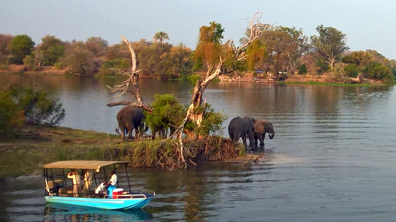Our first adventure in Zimbabwe was a sunset cruise on the Zambezi River. We had drinks, appetizers, and animal sightings.
