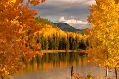 Colorado Fall Foliage 006 | Wall Art Resource
