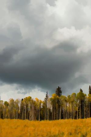 Colorado Fall Foliage 012 | Wall Art Resource