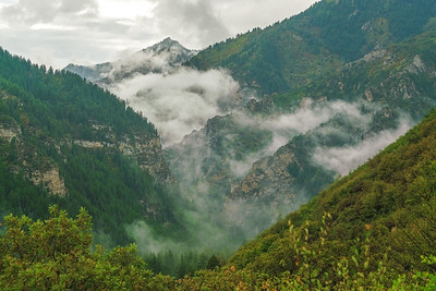 Misty Mountain Valleys 1