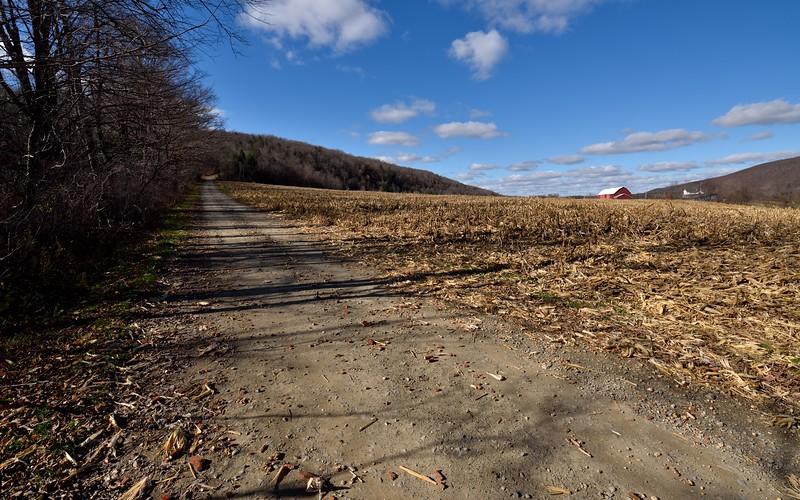 Delude Hill Road near Swain.  Nikon D750 and Tamron 15-30mm f/2.8 VC lens (November 2015).