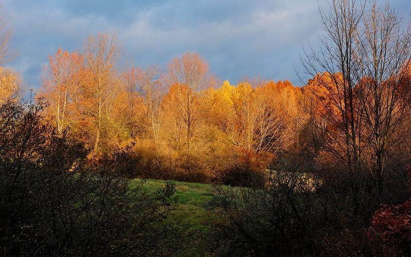 Sunrise beneath cloud cover.  Nikon D40 and 50mm f/1.4G lens (November 2015).