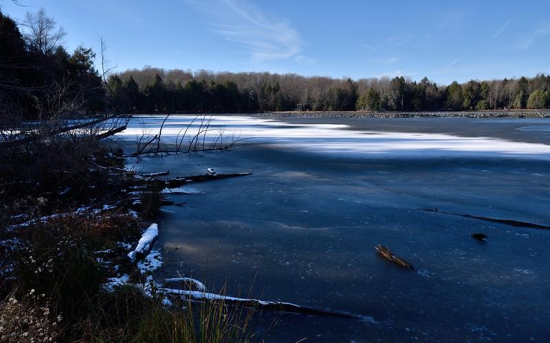 Goose City along Camp Road.  Nikon D750 and Tamron 15-30mm f/2.8 VC lens (November 2015).