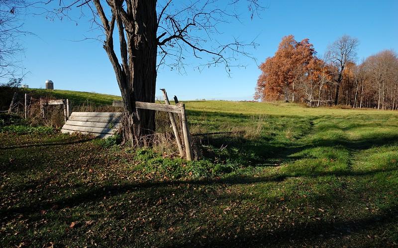 Along Papermill Road.  Nikon D40 and 10-24mm lens (November 2015).