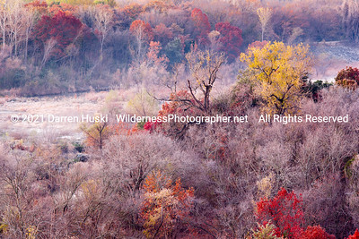 Fall color with frost and fog on the West Fork.