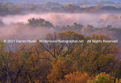 Autumn Fog on the West Fork