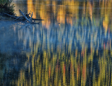 Autumn Reflection, Grand Teton National Park, WY.