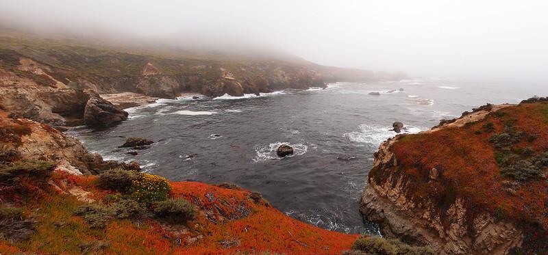 Big Sur coast in the fog, Hwy 1, CA.