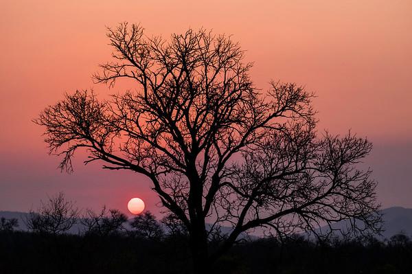 African Sunset, Kruger National Park, South Africa.