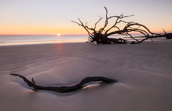 Driftwood Beach Sunrise, Jekyll Island, GA.
