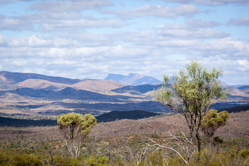 Yanyanna Track with views to the ABC Range