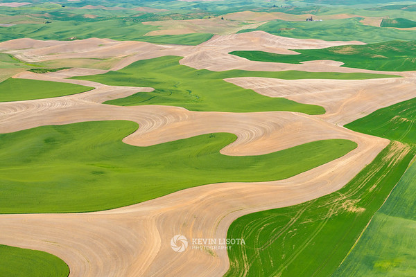 Flowing patterns of wheat fields in the Palouse