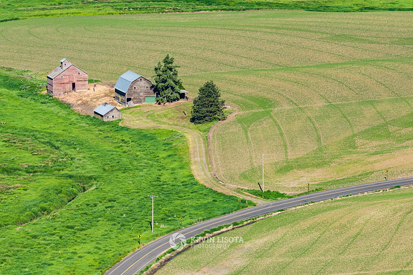 Old barns in the Palouse