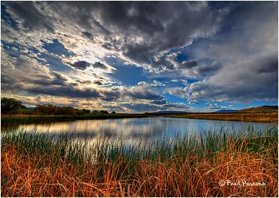 Pond in Arizona