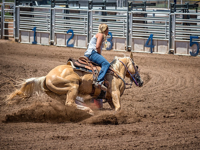 Taylor Rodeo - July 2017