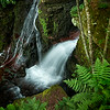 Trout Creek Falls