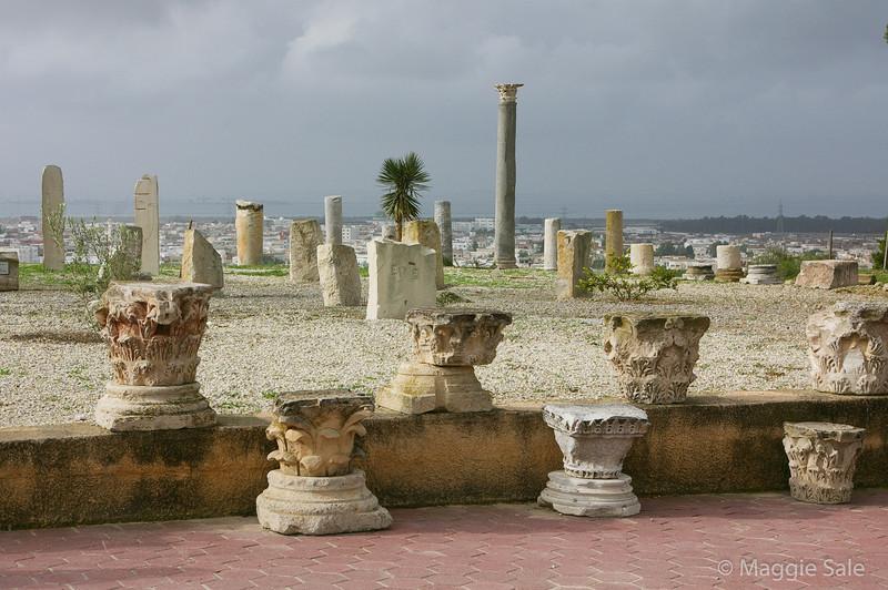 Roman columns above Tunis