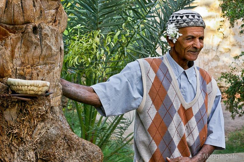 Date Palm climber, Tozeur