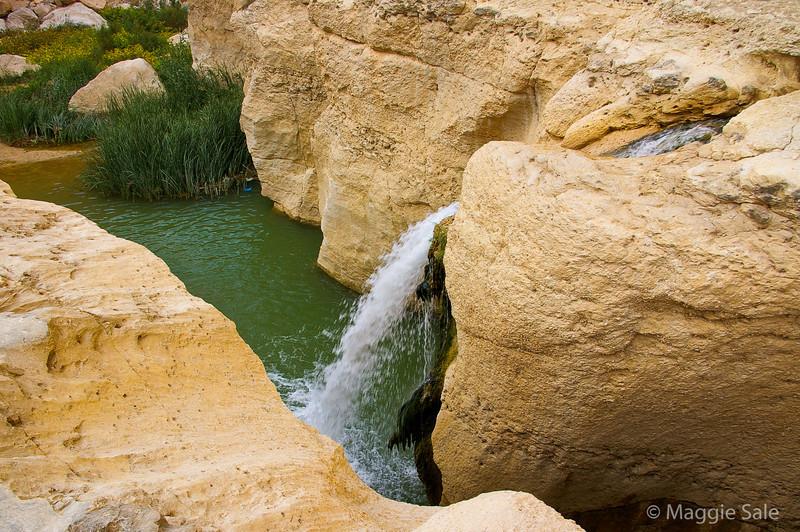 Desert water in canyon in Atlas Mountains
