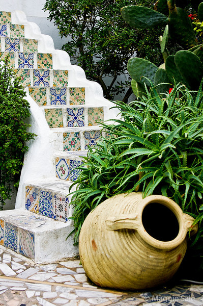 Courtyard steps in Sidi Bou Said