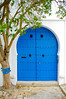Door and tree in Sidi Bou Said