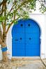 Door and tree in Sidi Bou Said