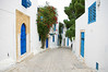 Street in Sidi Bou Said