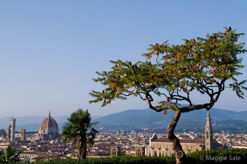 Michelangelo Plaza view across Florence