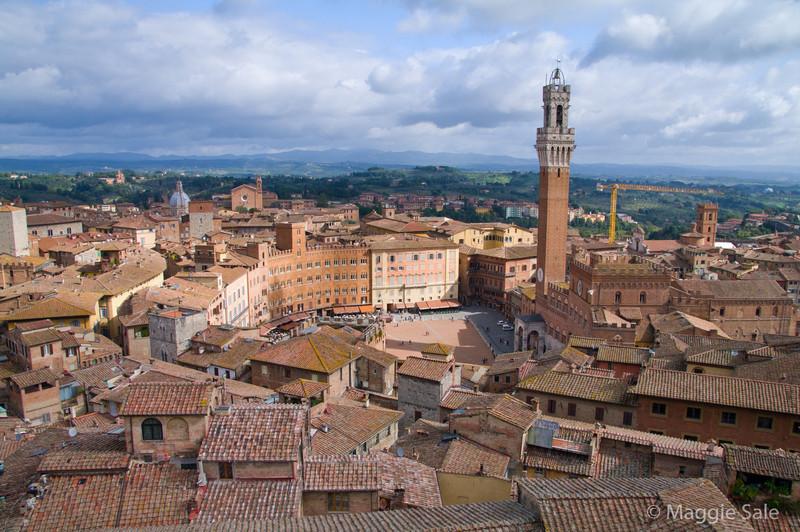 View of Il Campo, Siena