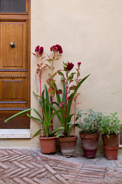 Flowerpots, Pienza