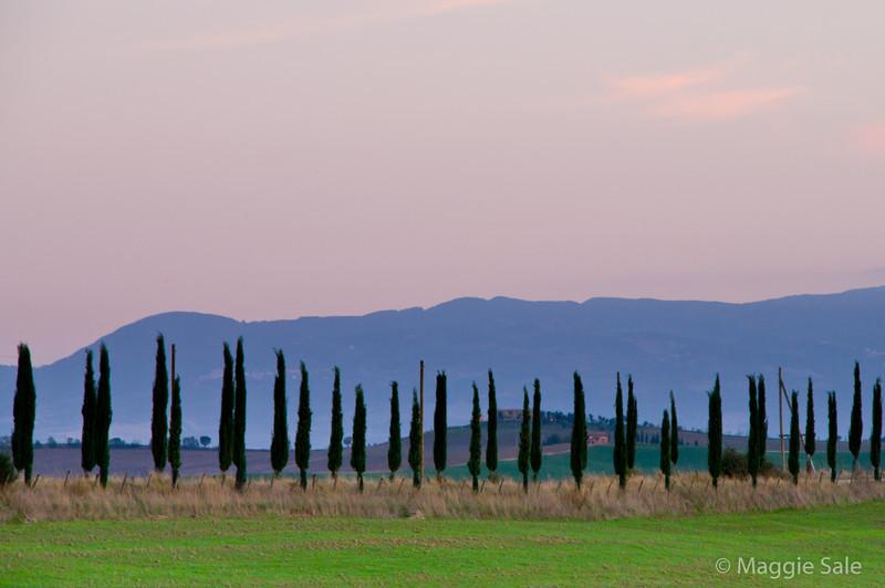 Cyprus row at dusk