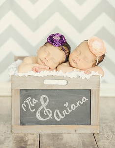 Newborn twins stat box photo