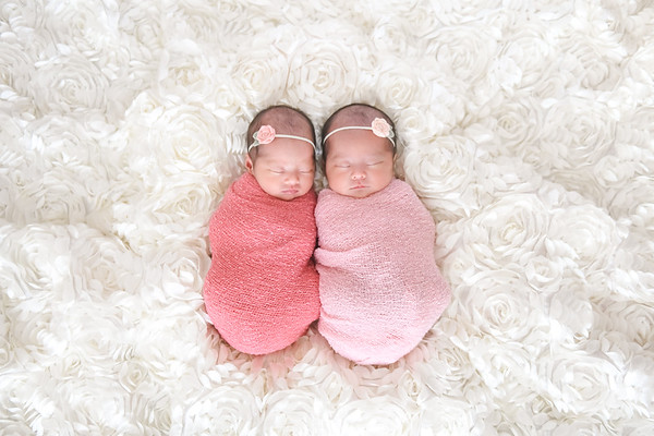 Newborn Twins Photographer Culver City