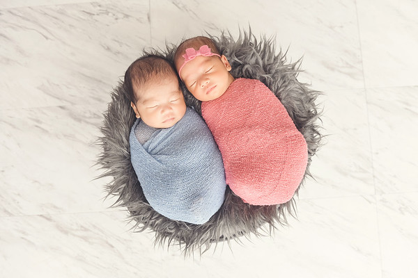 Westwood newborn twins photographer