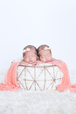 Cute newborn twins photo