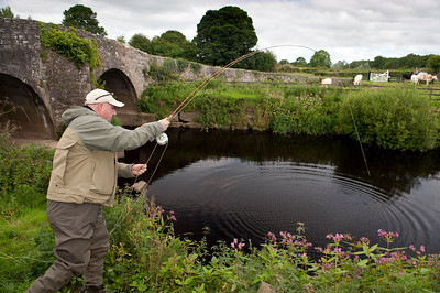 Playing a trout on the Tyrone Blackwater, Co Tyrone