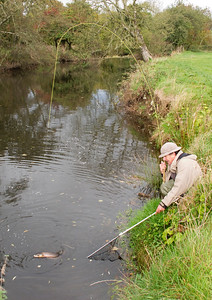 Angler playing a salmon on the Tyrone Blackwater late in the season