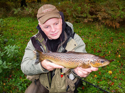 A dollaghan trout from The River B;ackwater Co Tyrone