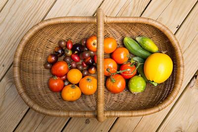Organic Garden Harvest, Tyson Research Center