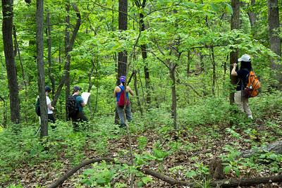 Summer 2013 Census, Tyson Forest Dynamics Plot