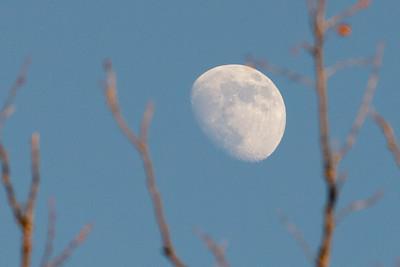 Moonrise Pastel